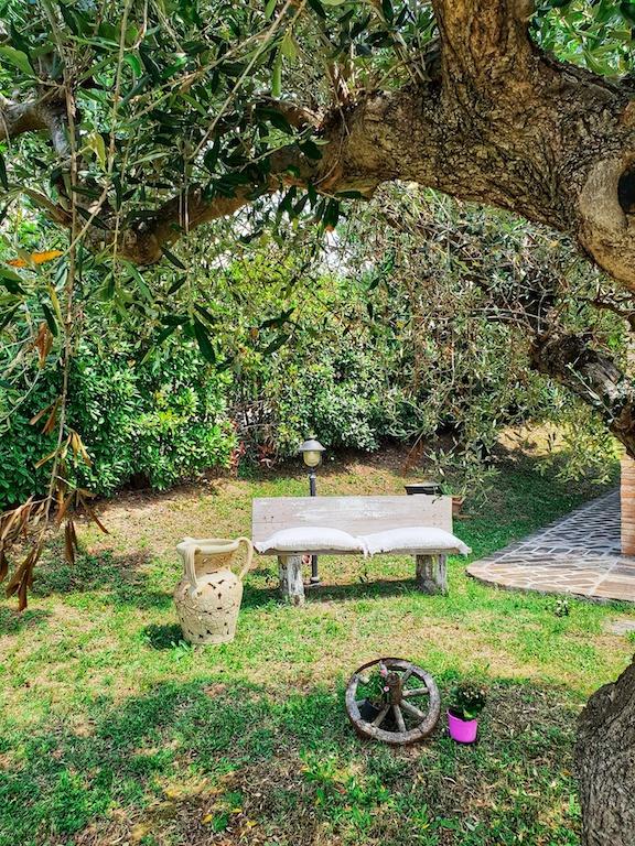Agriturismo Riccione Vacanze Relax Ulivi