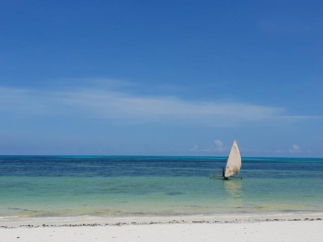 5 cose da fare a zanzibar, matemwe, oceano indiano, spiagge, stelle marine, snorkeling, different details, roberta arcangeli