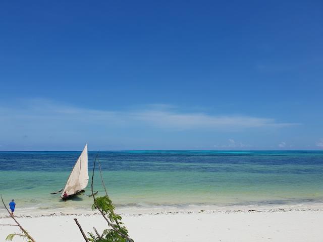 5 cose da vedere a zanzibar, jambiani beach, spiaggia di jambiani, different details