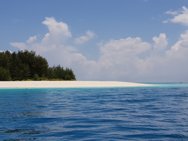 5 cose da vedere a zanzibar, mnemba, snorkeling, tanzania, roberta arcangeli