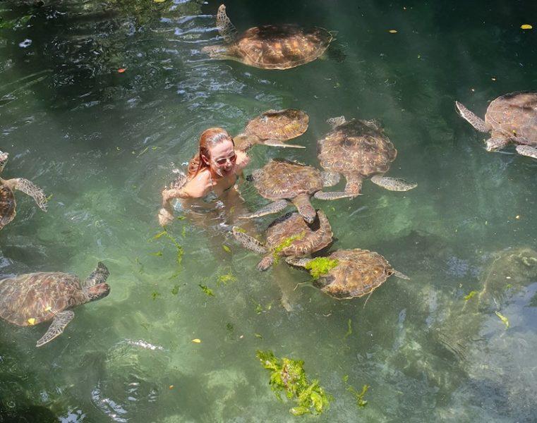 zanzibar, nungwi, tartarughe, 5 cose da fare a zanzibar, nuotare con le tartarughe, different details, roberta arcangeli