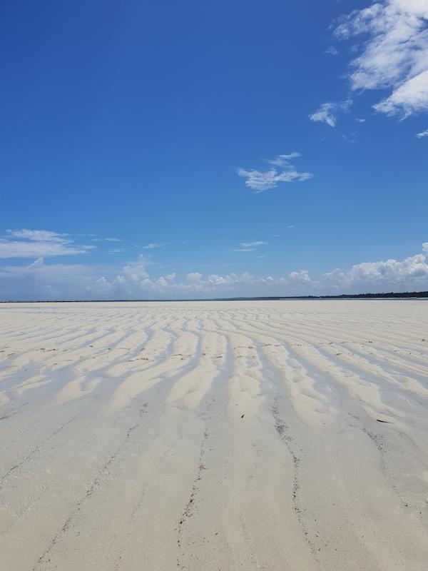 Maree Zanzibar Spiagge Tanzania Africa Different Details