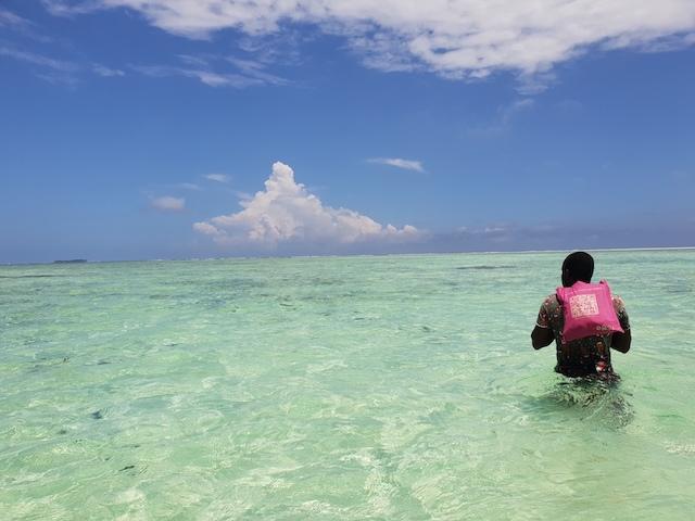 Maree Zanzibar Beach Boy Tanzania Different Details