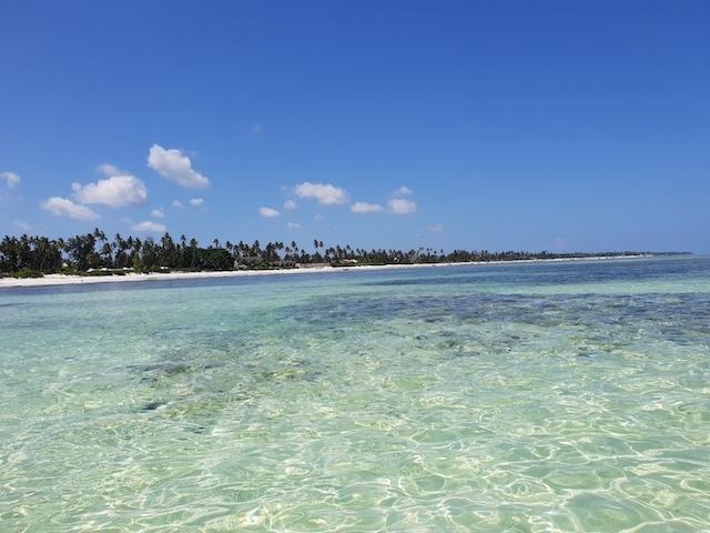 Spiagge Zanzibar Matemwe Jambiani Different Details