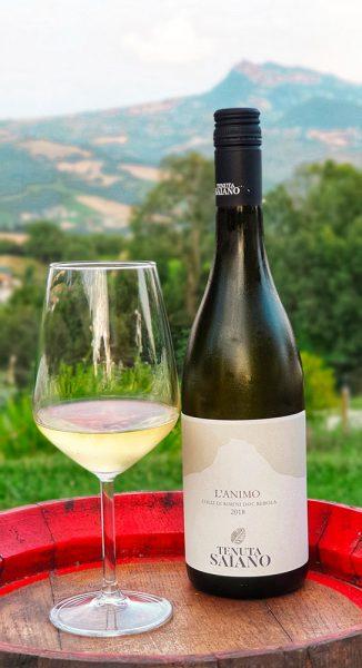 Vini naturali bucolica Roberta Arcangeli